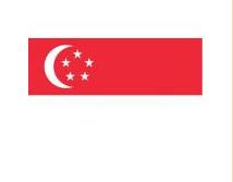 新加坡媒体发布