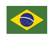 巴西媒体发布